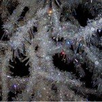 Swarovski Weihnachtsbaum