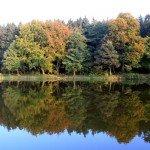 Herbstsee bei Tabarz
